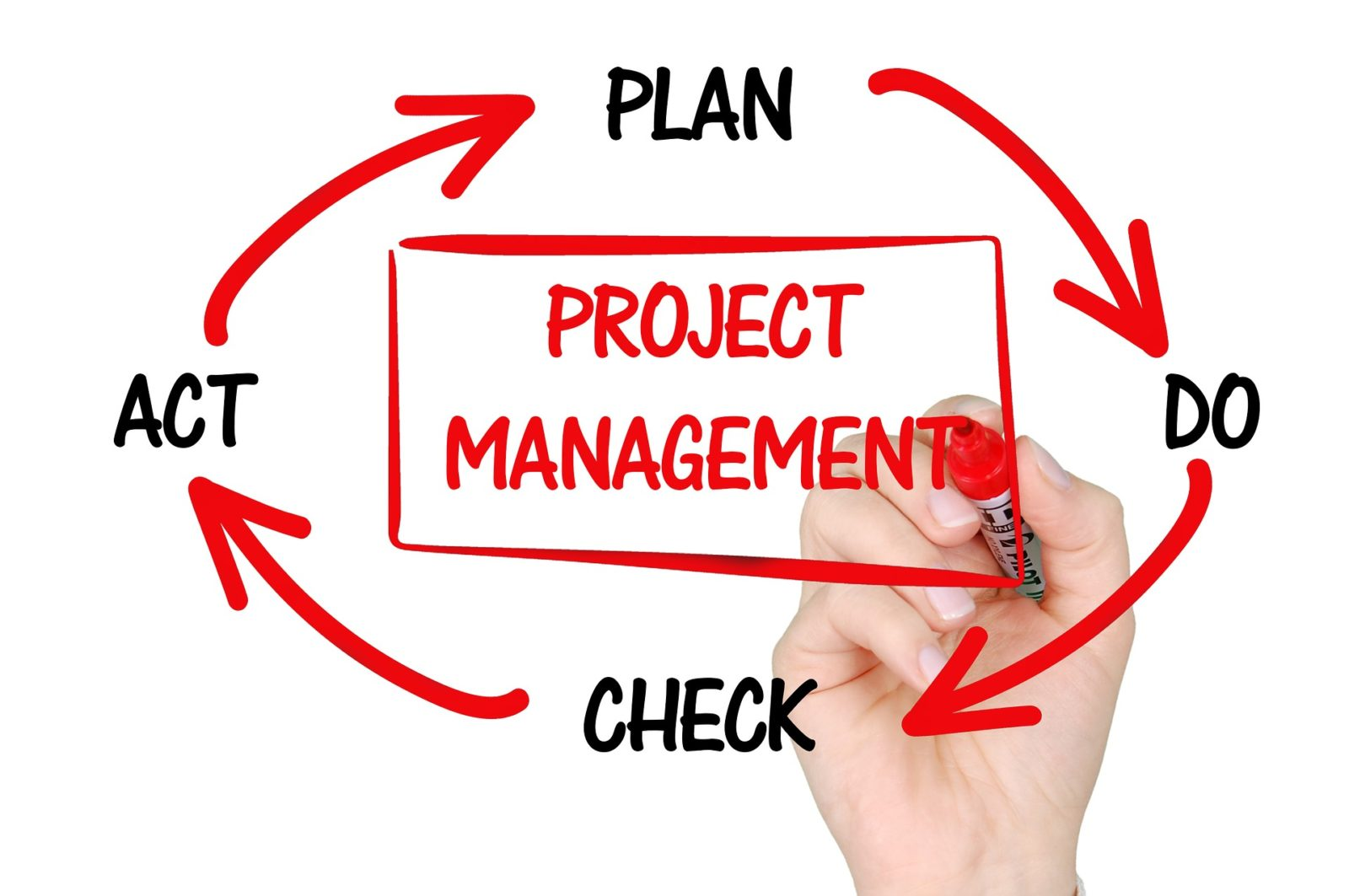 10 Great Leadership Skills For Project Management – Irish Tech News
